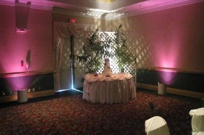 visions_weddingreception_decor_lighting_slide_7[1]